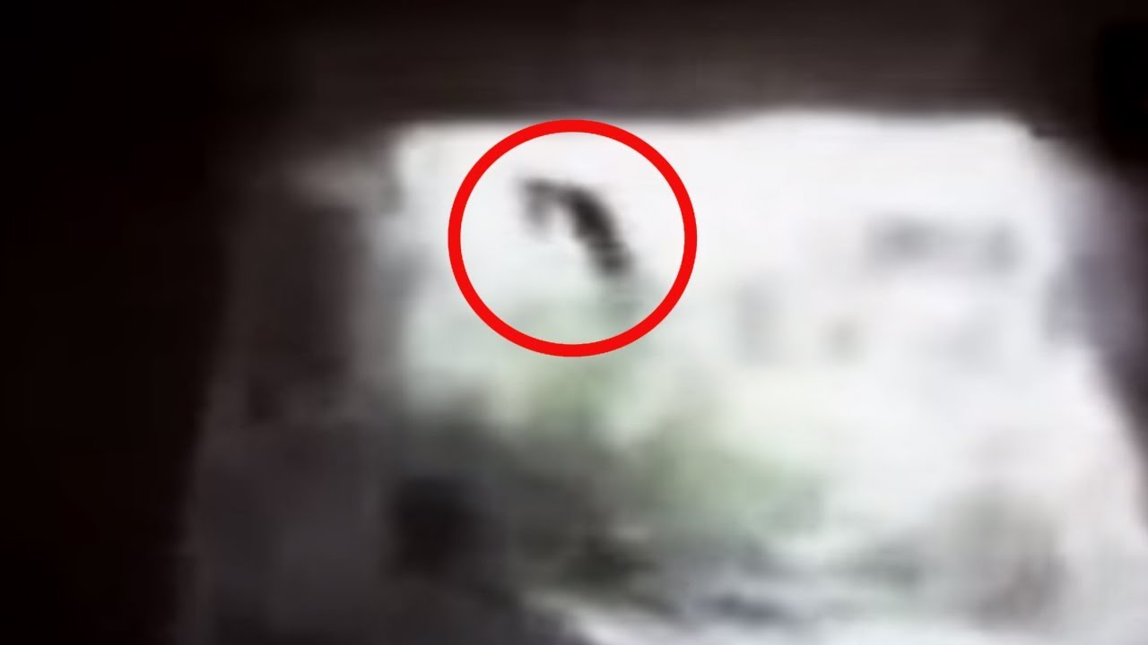 5 Witches Caught On Camera Amp Spotted In Real Life 2