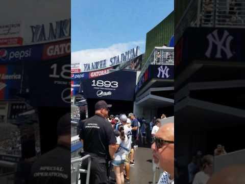 at Yankee stadium