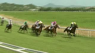 Vidéo de la course PMU PRIX ECLAIR DU FADA-BACHIR