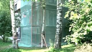 В Петербурге начался капитальный ремонт фасадов домов массовых серий(В краткосрочную программу включены 123 адреса. ------------------------------ vk.com/tkt_tv youtube.com/user/StoriesCity tkt-tv.tv., 2016-08-25T14:39:23.000Z)