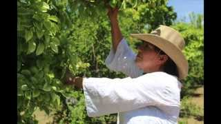Gema Zamora - Community Gardener San Elizario