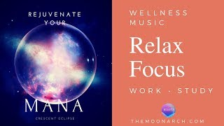 WORK STUDY Music | Be Focused and Relaxed • Music for Wellness