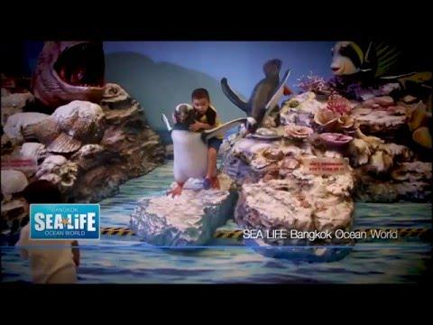 รายการ World Trip   เวิลด์ ทริป  Sea Life Bangkok Ocean World