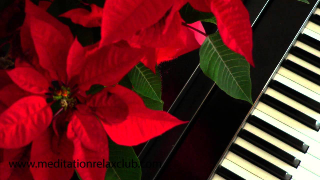 Christmas Jazz Music Live: A Very Merry Chrismas with our Jazzy ...