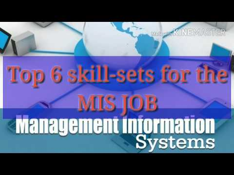 Top 6 Skill Sets To Be Successful In MIS Job