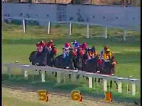Indian Horse racing-Tomsk  wins The Delhi Derby
