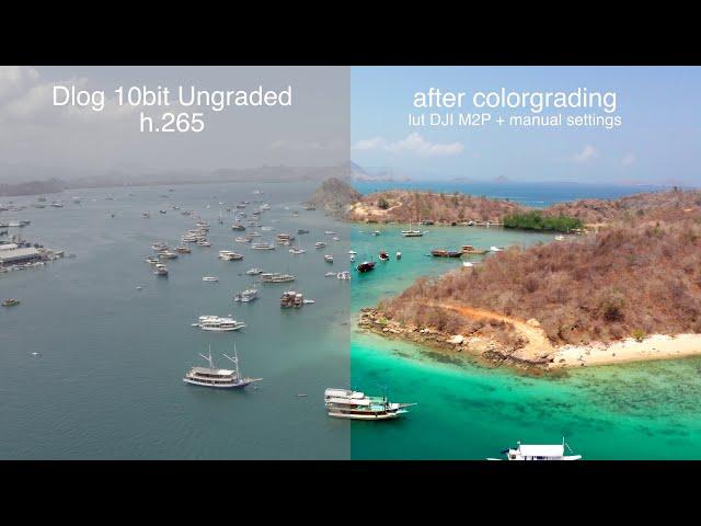 compare h.265 dlog 10bit to Rec.709 with Lut DJI - Mavic 2 pro 4K