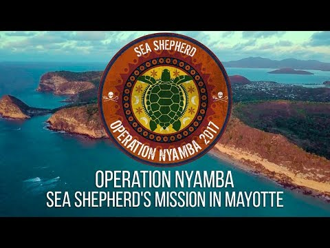 Operation Nyamba: Sea Shepherd's Mission in Mayotte
