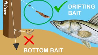 The Secret to Cat¢hing BIG Fish at the Pier! (Simple Pier Fishing Tip)