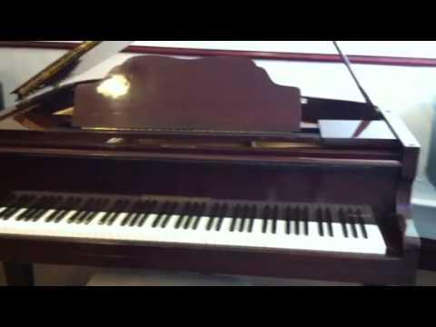 Sherwood Phoenix Pianos Wee Glasgow Showroom, Video Introduction