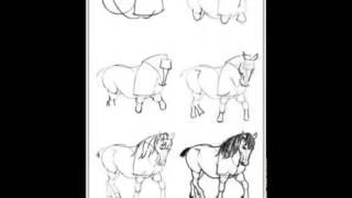 Как рисовать лошадь правильно