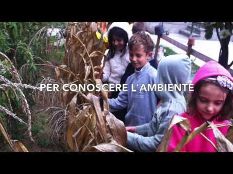 Benvenuti alla Scuola Primaria Rossignoli di Nizza Monferrato