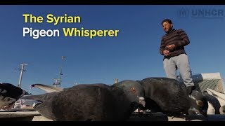 Greece: The Syrian Pigeon Whisperer