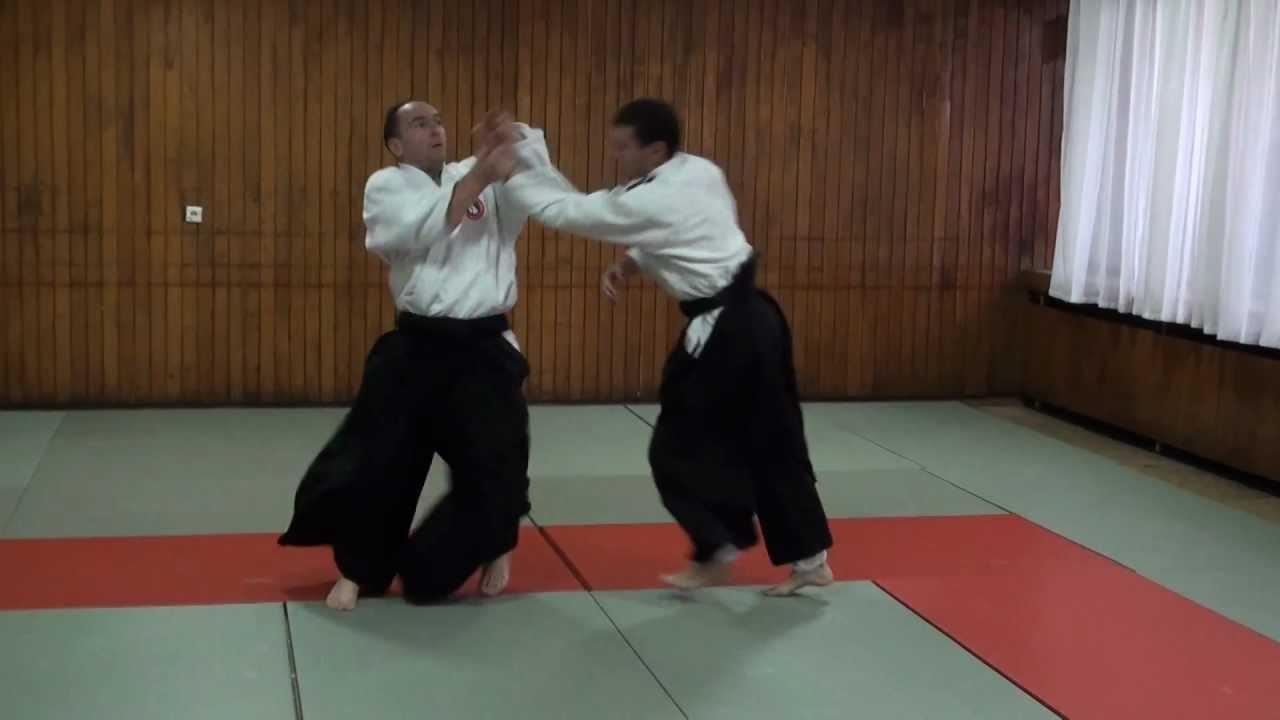 Bratislav Stajic | Instruktorski aikido seminar | Internacionalna Aikido Akademija