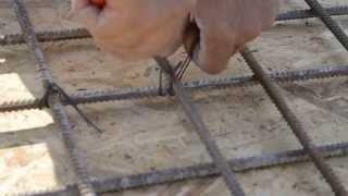 как вязать арматуру крючком(Всю статью по вязке арматуры крючком можно найти по адресу http://101ohibka.ru/betonnye-raboty/vyazanie-armatury-kryuchkom.html#more-1028., 2013-07-30T16:30:07.000Z)