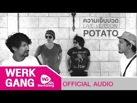 ความเจ็บปวด – POTATO [Live Version] mp3 baixar