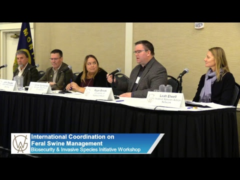 Workshop: International Coordination on Feral Swine Management
