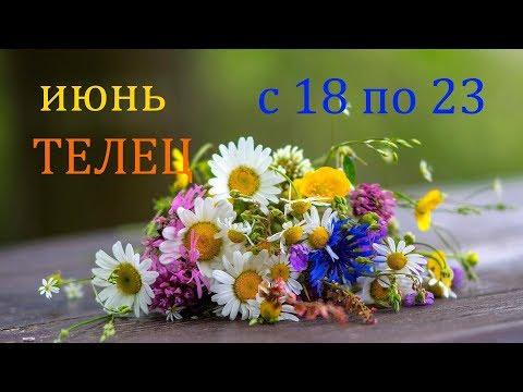 ТЕЛЕЦ. ГОРОСКОП на НЕДЕЛЮ с 18 по 23 ИЮНЯ 2019 г.