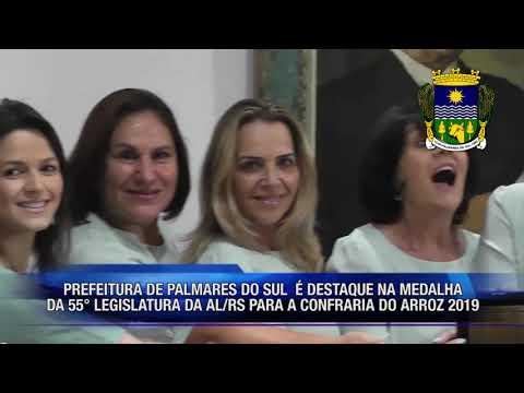 16.12 MEDALHA 55ª LEGISLATURA - PALMARES DO SUL