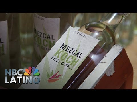 Forget America: Distilling The Mexican Dream One Bottle At A Time | NBC Latino | NBC News