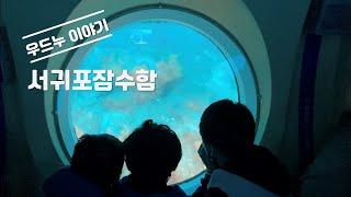 [우드누이야기] 서귀포잠수함