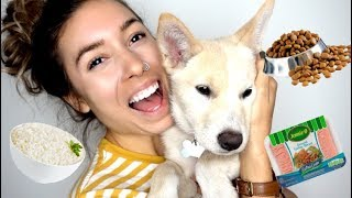 EATING CHALLENGE w/ MY PUPPY!!