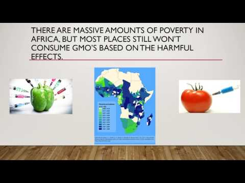 Genetically Modified Foods Powerpoint