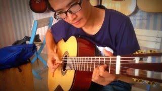 Nụ hồng mong manh - Guitar Dũng Hớn Hỡ