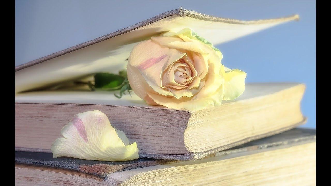 Gedicht Zum Thema Nachruf Es Weht Der Wind Ein Blatt Vom Baum