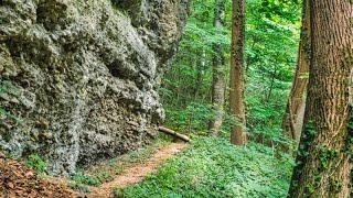 Günztal-Wanderung 2: Aurikelschlucht und Rettenbacher Steinfelsen