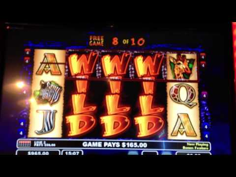 The Wildlife video slot machine big win !