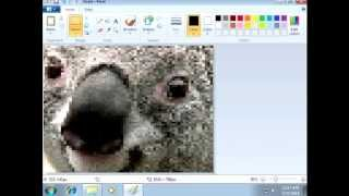 [Vinesauce] Joel - Windows 7 Destruction