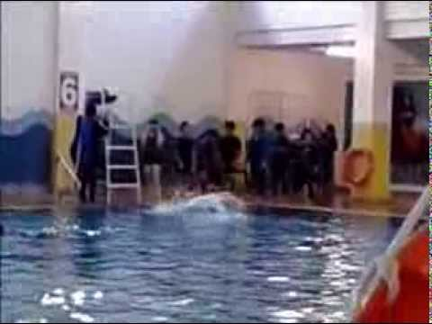 Swimming Assessment - Yasmin Hanani