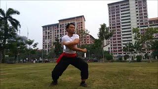 Hung Gar Twin Dagger Form 双匕首