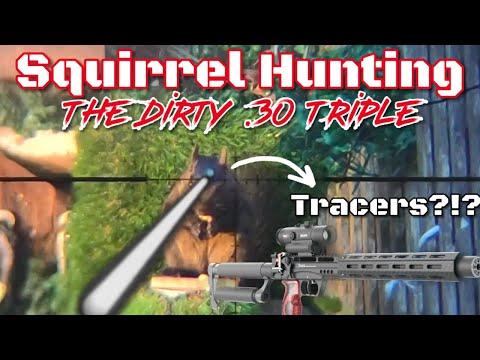 Squirrel Hunting (EDgun Leshiy)