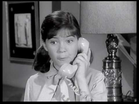 Donna Reed Show S08E24 No More Parties,Almost