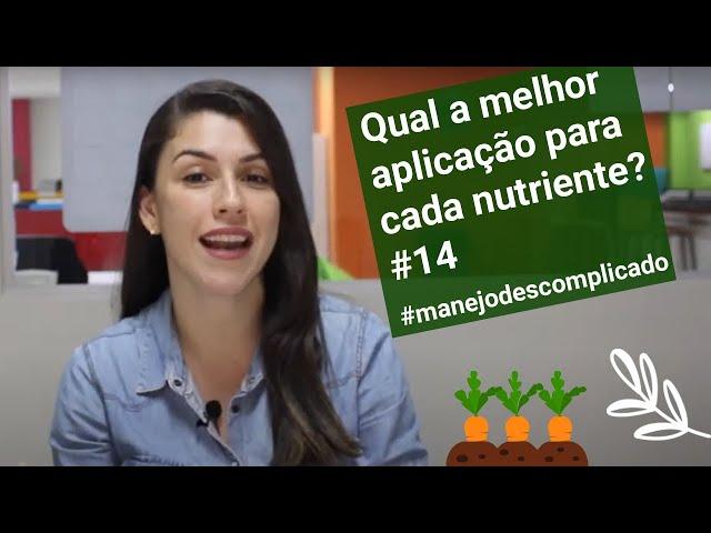 Qual a melhor aplicação para cada nutriente? #14 #manejodescomplicado