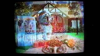 (June 25, 1999) WGAL-TV 8 NBC  Lancaster/Lebanon/Harrisburg/York Commercials (Part 1) thumbnail