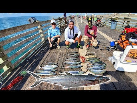 This Is What Happens When The Water Is Clear In Galveston Texas! Galveston Fishing Pier