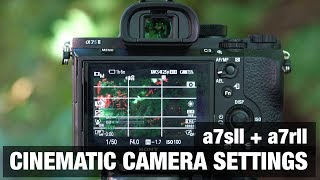 Best CINEMATIC Camera Settings 🎥 Sony a7sII + a7rII - Filmmaking Tutorial