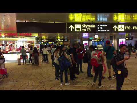 Travel video compilation: Review inside Singapore Changi Airport departure lounge