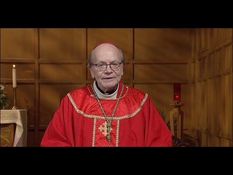 Daily TV Mass Monday November 12 2018
