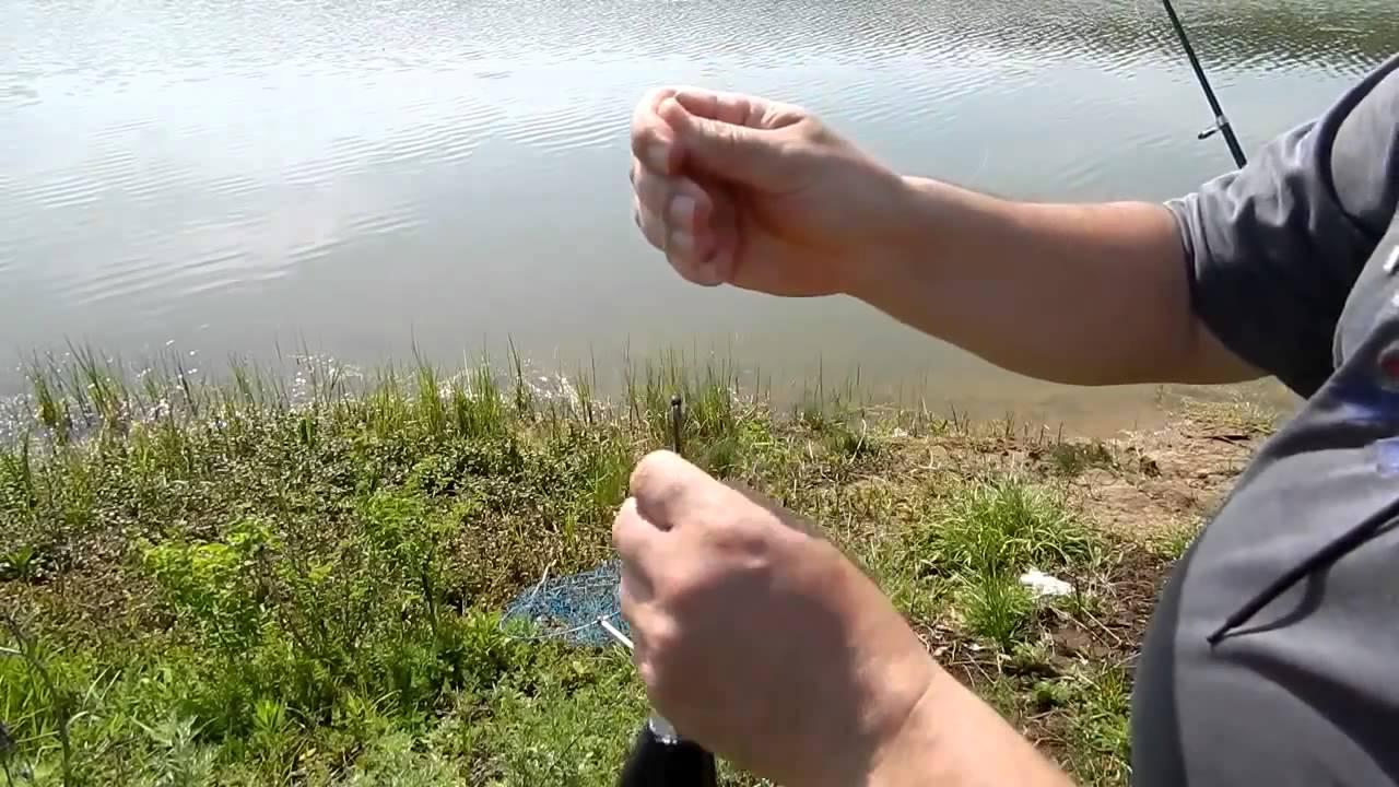 i рыбалка ловля толстолобика