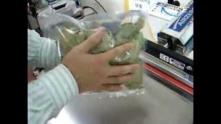 진공포장기로 월계수 잎 질소충진후 포장하기