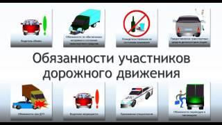 Видеоурок 4. Обязанности участников дорожного движения.