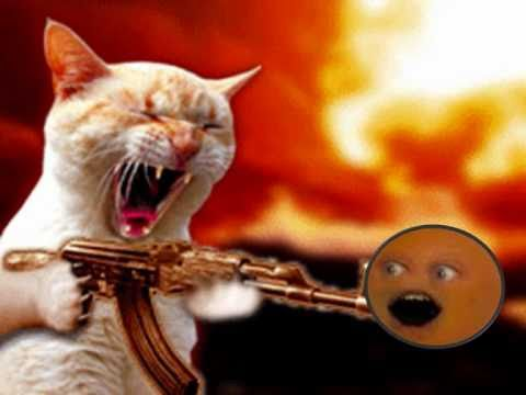 Taz the cat vs annoying orange