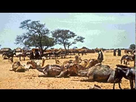 1959 photos from Bornu Province Nigeria 052815