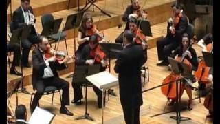 Pequeña Serenata Nocturna de Mozart - 1.Allegro