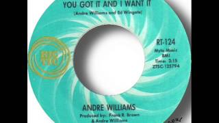 Andre Williams   You Got It And I Want It