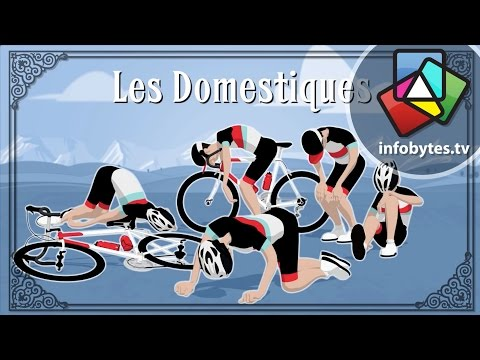 The Tour De France Explained in Animation
